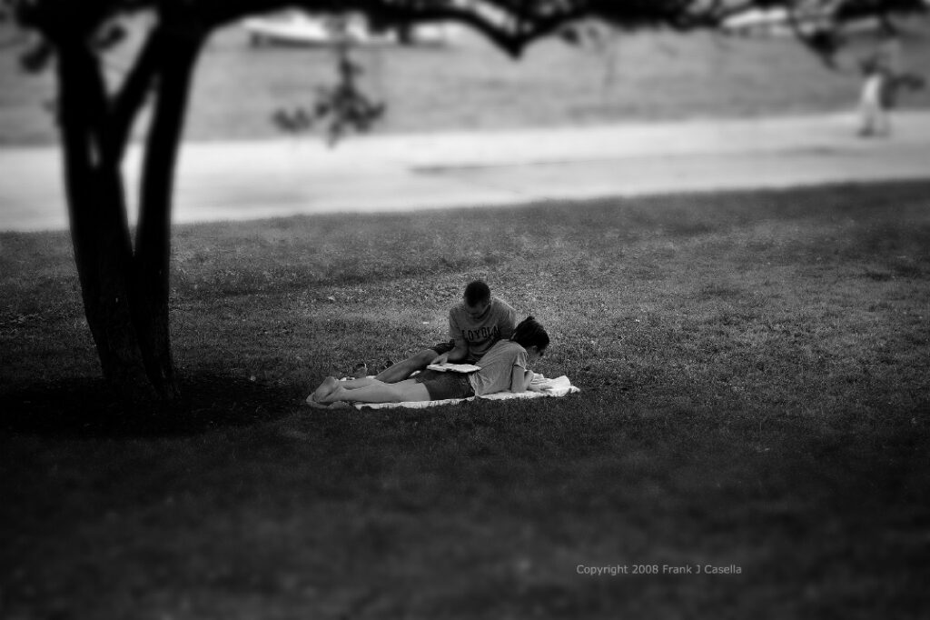 A man and a woman, who appear to be lovers, reading under a shaded tree by the Lake Michigan in Chicago, Illinois.